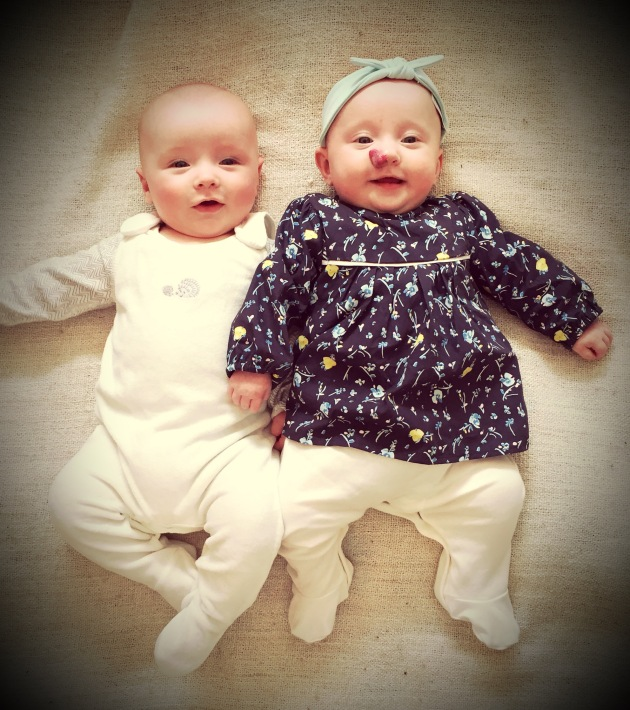 baby twins. boy girl twins 5 month old twins
